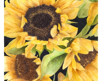 Vibrant Sunflower Watercolor Giclee Print
