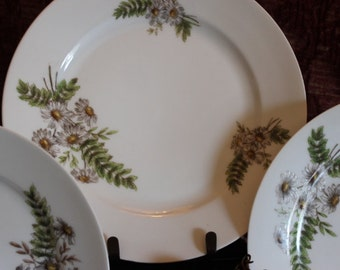 "Set of 3 Antique Charles Field Haviland 9.5"" Luncheon Plates  - CFH GDM, Daisy and Fern Pattern, French Limoges"