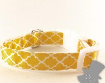 Yellow Quatrefoil Design Dog Collar