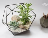 Geometric Terrarium / Icosahedron / Stained Glass Terrarium / Handmade Glass Planter / Stained glass vase