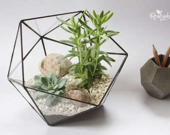 Geometric Terrarium / Middle Icosahedron / Stained Glass Terrarium / Handmade Glass Planter / Stained glass vase