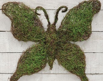 Butterfly-Angel Vine-Moss-Great for Spring