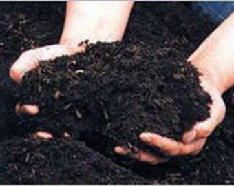Organic Compost (Black Gold) 1 Gallon Bag