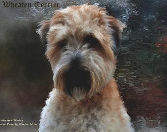 The Wheaten Terrier