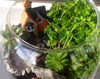 "Florarium ""Home Sweet Home"""