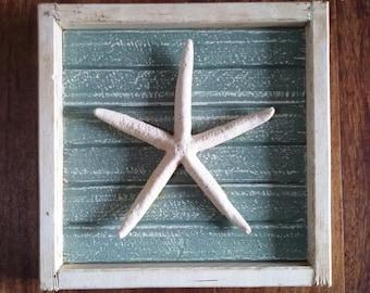Boxed Starfish Wall Hanging