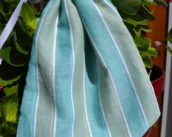 Blue and Green Stripes Reticule