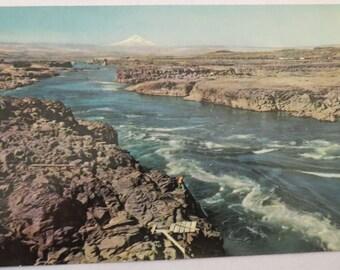 Vintage Columbia River, Oregon Postcard