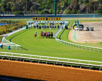 Del Mar Racetrack Print