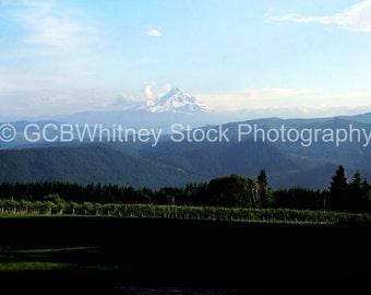 Gorge Mt. Stock Photo
