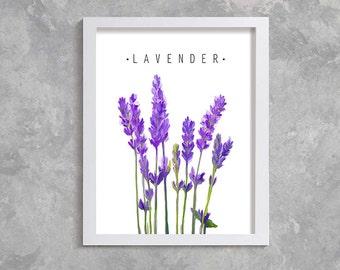 Lavender Print, Printable Art, Modern Wall Art, Wall Decor, Digital Download,  floral print