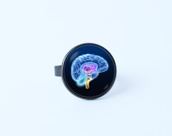 Human anatomy brain ring Neuroscience ring Brain ring Brain jewelry Brain surgeon Anatomical jewelry Gift for nurse Anatomy jewelry Neuron