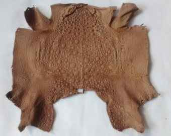 Frog leather