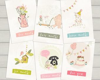 "Baby milestone cards ""Cute animals"" / 1-12 months birthday photo props"