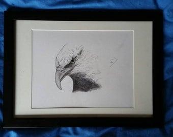 Eagle sketch - Print