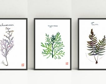 Green Plant Print Set of 3 - digital download- 8x10
