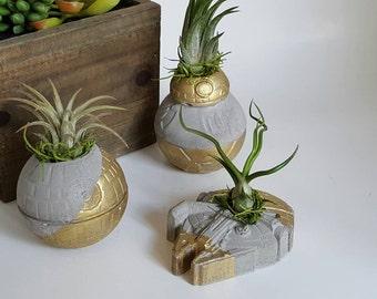 Pack of Star Wars Air Plant Concrete Planters
