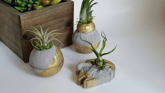 Star Wars Air Plant Planter