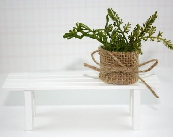 Miniature dollhouse plant in burlap pot