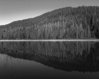 Black and White - Landscape Photography - Reflection Forest