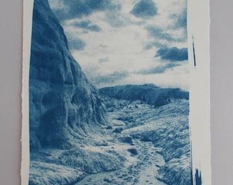 Cyanotype Print, Toadstools, Utah