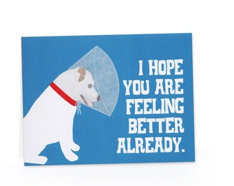 Dog with Cone (Feel Better) Blank Card