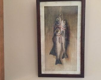 1910 fish on stringer picture