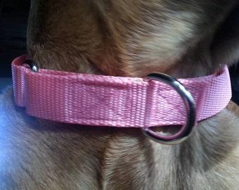 Martingale Style Dog Collar
