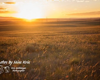 16x20 High Quality Photograhic Print  of a prairie field in the sunset