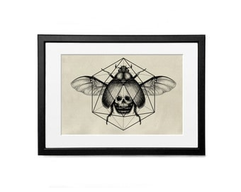 Beetle and skull Print Illustration A4 Poster Wall Decor