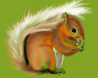 Red Squirrel-Print