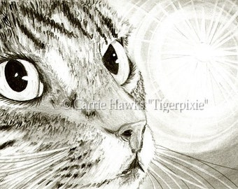 Tabby Cat Art Cat Drawing Fairy Light Cat Portrait Fantasy Cat Drawing Fantasy Cat Art Print 5x7 Cat Lovers Art