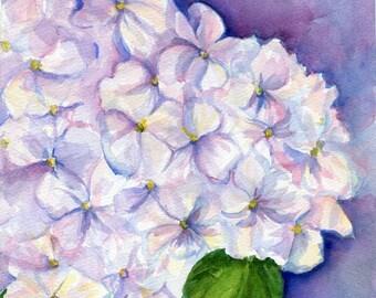 Hydrangeas Watercolor Painting Original, floral art 8 x 10, original flower painting, hydrangea artwork, original watercolor painting