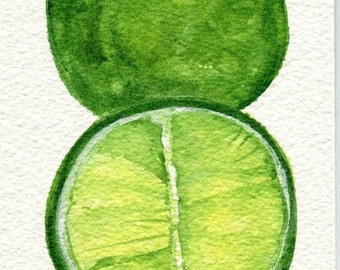 Limes watercolor painting original , lime artwork. limes painting, kitchen decor, food illustration, 4 x 6, original painting