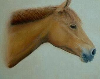 CUSTOM HORSE PORTRAIT   Original Animal portrait  Fine Art Custom Pet Portraits,  birthday gift, Anniversary, Gift, horse painting portrait