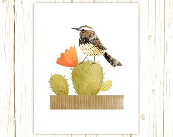Cactus Wren Print -- bird art -- bird art 52 birds stephanie fizer coleman illustration