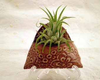 Miniature Ceramic Wall Pocket, Lace Flower, Air Plant Holder, Wall Hanging, Christmas Gift