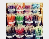 Holiday Sale Stick Candy: square fine art photograph print of colorful, old-fashioned sweet treat (shabby chic wall art)