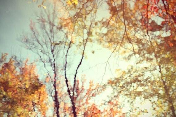Autumn Landscape, Tree Reflection, Woodland Decor, Nature Photography, Autumn Photography, New England, Farmhouse Decor