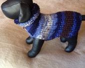 Winters Night Chihuahua sweater.