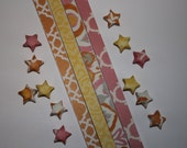 Origami Lucky Star Strips -  Tahitian Sunset Pack of 100