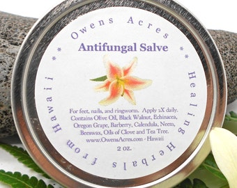 Antifungal Salve, Dry Skin, Skin Rash, Itchy Skin, Nail Fungus, Herbal Salve, Foot Fungus, Skin Salve, Ring Worm, Handmade, solar infused