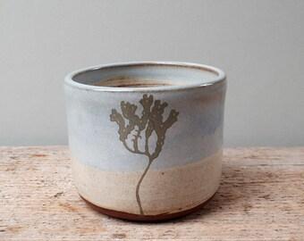 Blue Seaweed Cup