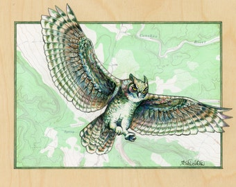 Owl art on topography map, Archival print, wildlife illustration, animal print, wall art Flying Owl illustration, bird art, bird painting