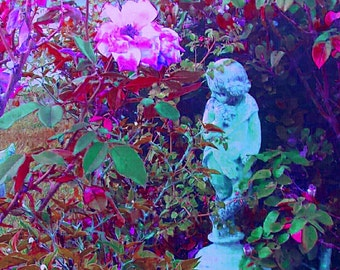 Garden,art,pink, purple, statue, flower, roses