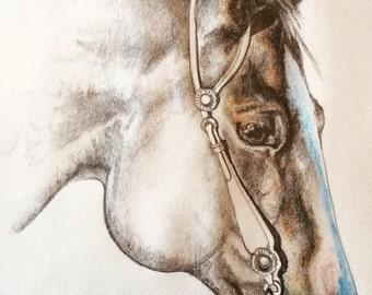 CJ Horse Print