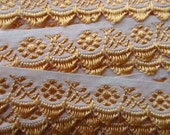 Hungary Embroidered Jacquard Trim 5/8 Inch Wide 2 Yards  Folk Costume Trim White And Peach  HFT 8