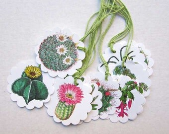 Cactus Plant Tags, Cactus Gift Cards, 12 Cactus Images Tags, Cactus Gift Tie Tags, Set of 12 Cactus Plant Tags, Flowering Cactus Images