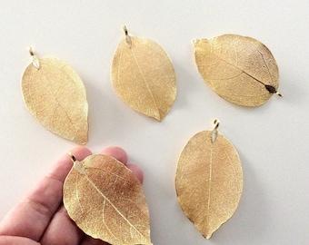 1 pc Matte 22K Gold Plated Filigree Leaf Pendant- 75x30mm-(006-044GP)