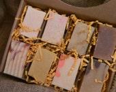 Goats Milk Soaps Sampler Family or Couples Gift Box 2